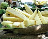 Bayamesa Cuisine a Taste of History