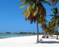 Cuban province gives priority to face the climate change