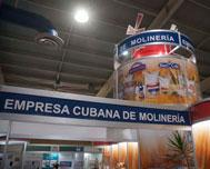 Cuban Mixed Companies Work to Increase Productive Capacities