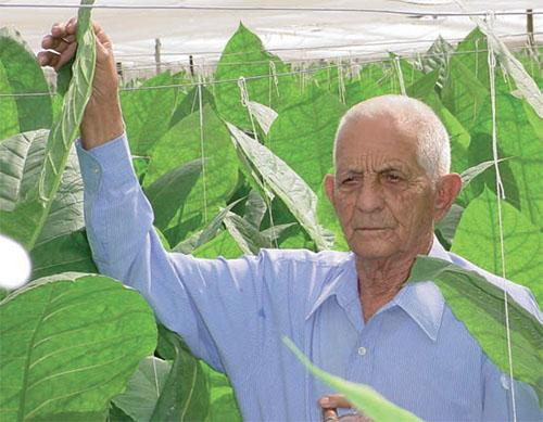 Alejandro Robaina: Ninety Years Dedicated to Tobacco