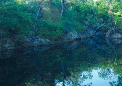 Cienaga de Zapata, Nature's Jewel