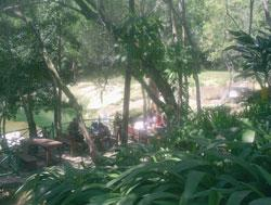 Las Terrazas A Singular Community in Western Cuba