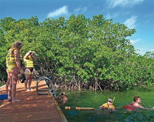 La Redonda Lagoon: Nature and Fishing