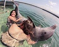 Swimming with Dolphins in Varadero