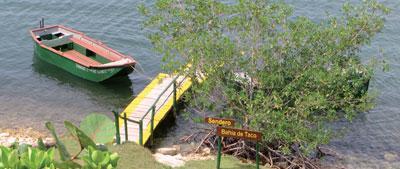 Taco Bay: Sailing and More